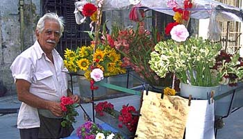 Flower vendor Havana